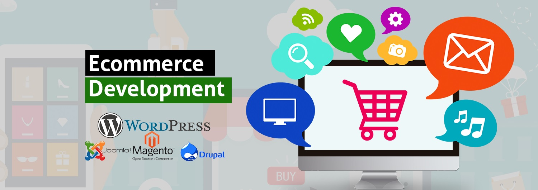 Best Ecommerce Website Development Company Web Design Services Agency Mint Media