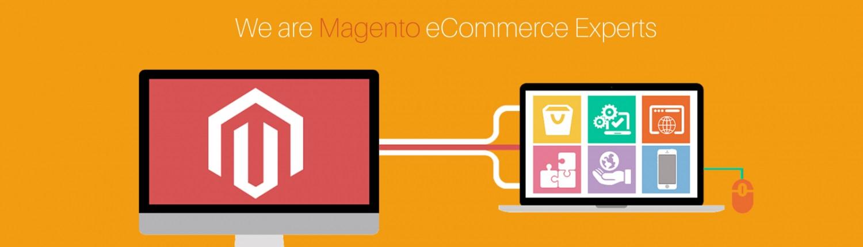 Best Web Magento Plugin Theme Design Development Company Services Mint Media