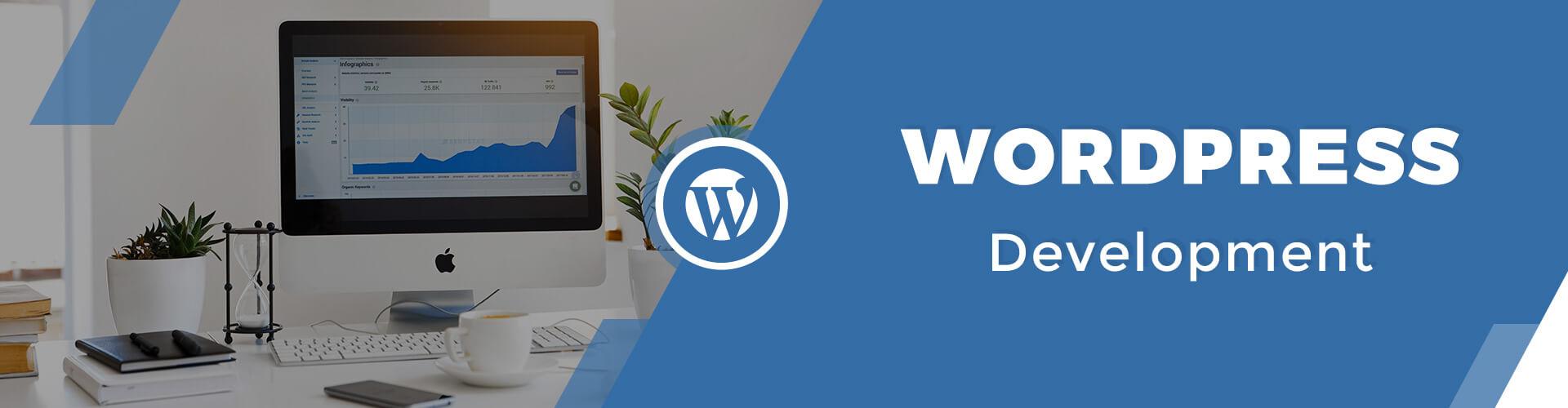 Best Web WordPress Plugin Theme Design Development Company Services Mint Media